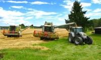 Piaţa terenurilor agricole, în creştere constantă. Un hectar de teren agricol fertil se vinde cu 3.000 de euro