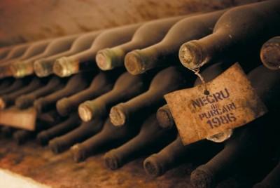 Război rece Moscova-Chişinău. Rusia a interzis importul de vinuri din Republica Moldova