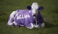 Sfârșit de an cu surprize dulci de la Milka