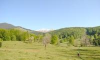 Asociatia Drumetii Montane: Parcul National Retezat, o experienta de neuitat