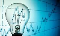 Oferta Electrica, magnet pentru investitori. La ce pret s-ar putea tranzactiona actiunile din 3 iulie
