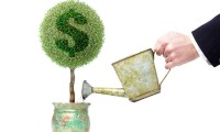 Bani gratis. Ce finantari nerambursabile sunt disponibile in 2016