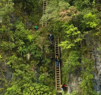 Sudul Chinei - satul Jiawan - elevi care se catara pe scari din lemn pentru a ajunge la scoala