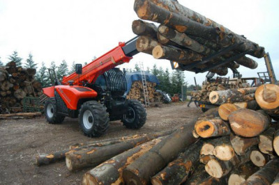 INCREDIBIL. Ikea detine 46.700 de hectare de paduri in Romania