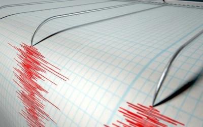 Cutremur de 4.6 grade pe scara Richter in Romania