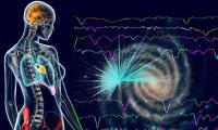 Un organ nou a fost identificat în corpul uman. El joacă un rol important în răspândirea cancerului
