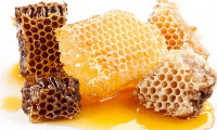 Capacul fagurelui de miere vindecă ficatul, plămânii, reglează metabolismul