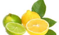 Remedii naturale cu efecte imediate împotriva negilor