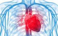 Grupele de sange si riscul lor cardiovascular – studiu