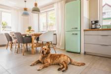 Idei inedite pentru amenajarea și decorarea bucătăriei, pentru a găti mereu cu plăcere!