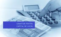 300 de lei/comunicat de demarare si incheiere proiect finantat prin Masura 2 Granturi pentru capital de lucru